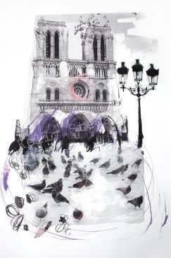 Pigeons at Notre Dame